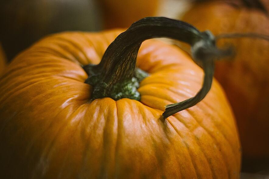 pumpkin-1031112_960_720.jpg